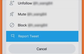 report-tweet